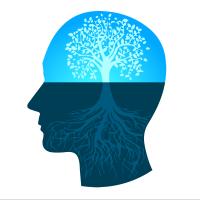 profile view of brain