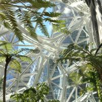Amazon spheres, restoration technology
