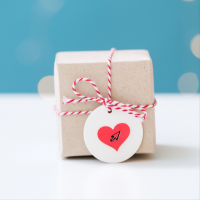 Gift Ideas for Software Professionals