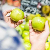 Person comparing two similar apples