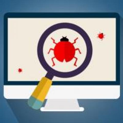magnifying glass on bug