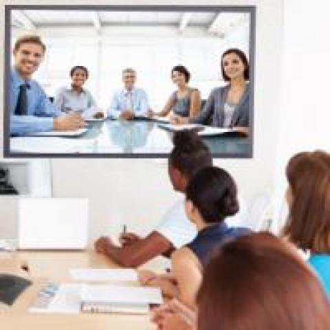 Remote workers in a video conference