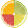 Four quadrants of citrus fruit